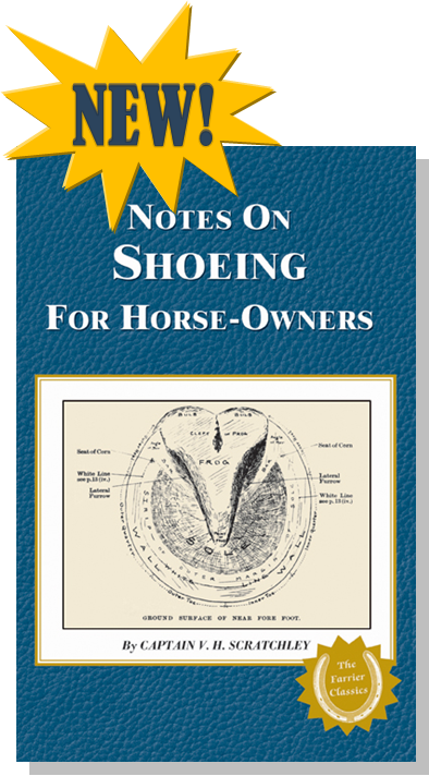 Notes On Shoeing For Horse-Owners
