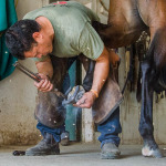 /ext/galleries/fall-2017-american-farriers-association-certification-mokear-il/full/23_AFA-Cert-JC-0915.jpg