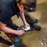 /ext/galleries/farriers-at-work-bob-pethick/full/035_Bob_Pethick-_JM_0717.jpg