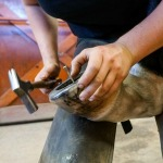 /ext/galleries/farriers-at-work-bob-pethick/full/1075_Bob_Pethick_JM_0717.jpg