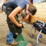 /ext/galleries/farriers-at-work-bob-pethick/full/1247_Bob_Pethick_JM_0717.jpg