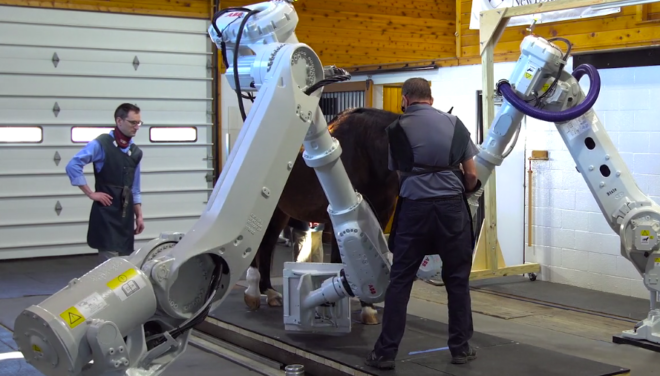 Robot-Driven Equine Imaging System Opens New Avenues For Discovery
