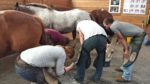 Mission Farrier School