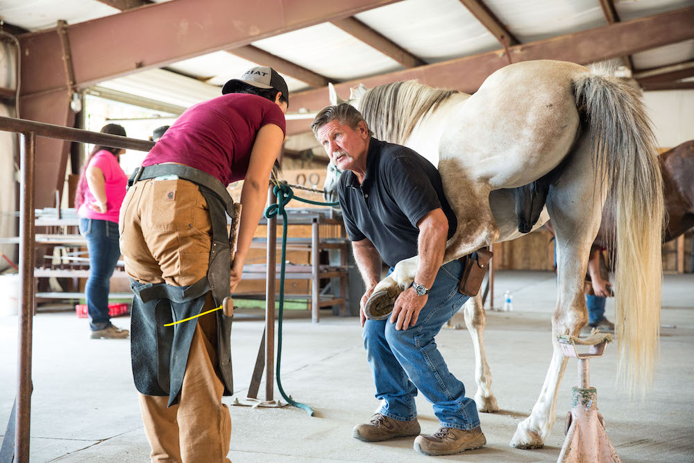 Pacific Coast Horseshoeing School