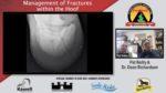 Hoof fractures