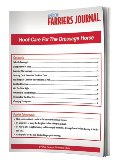 Dressage Hoof Care Presents Uncommon Challenges