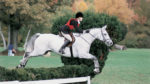 hunter jumpers