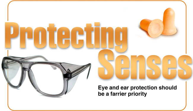 Protecting your senses