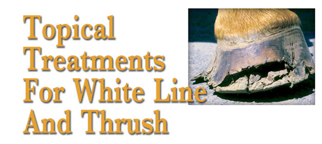 Topical Treatments for White Line and Thrush