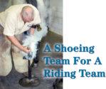 A Shoeing Team