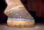wooden support block