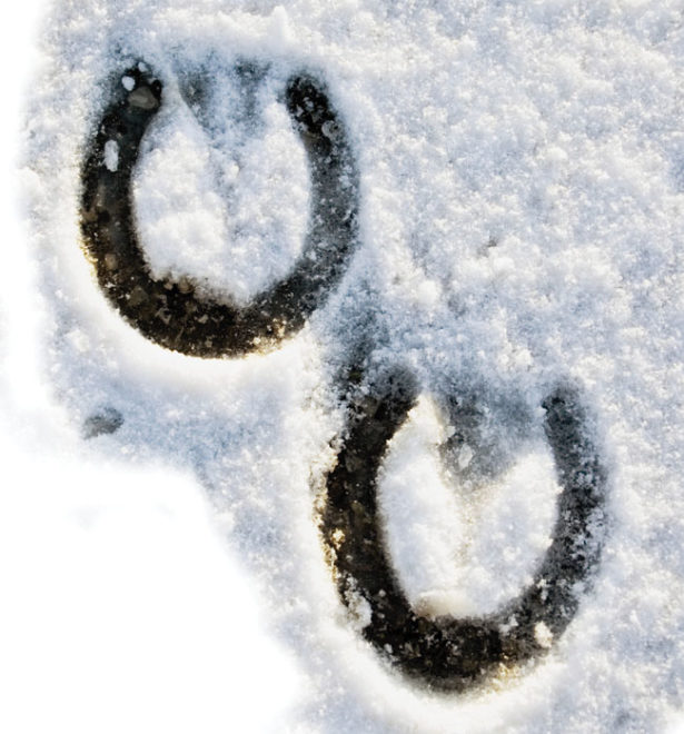 Hoof Care on Ice and Snow