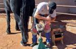 desert-shoeing-3.jpg