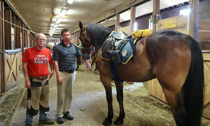 Hall Family Keeps Philadelphia's Police Horses Going