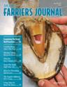 Cover_AFJ_0517_web.png