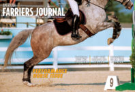 Cover-Gatefold_AFJ_0518_pub.jpg