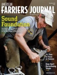 Cover_AFJ_1219_pub.jpg