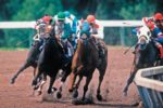 Race_Horses_turn.jpg