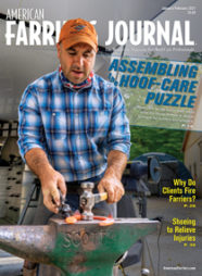 Cover_AFJ_0121_pub.jpg