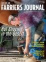 Cover_AFJ_0521_web.jpg