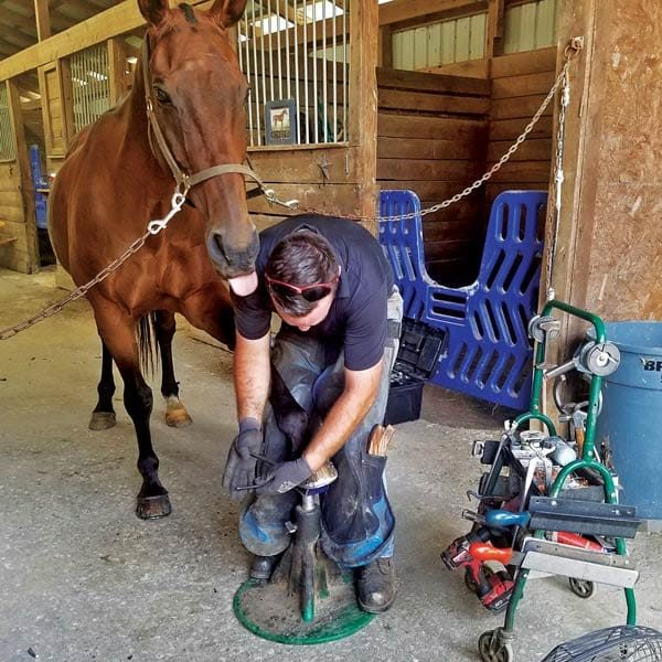 Farrier Joshua Sanders working on front limp of horse