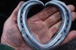 heart horseshoe