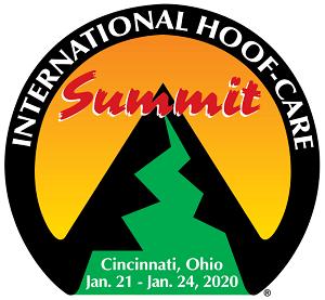IHCS2020 Logo