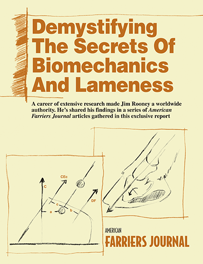 DemystifyBiomechanics_ivoryPaper_cover_web.png