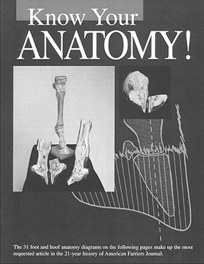KnowyourAnatomy_cover_web.png