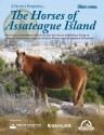The Horse's of Assateague Island
