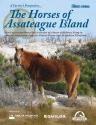 The Horse's of Assateague Island
