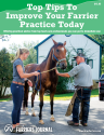 Top Tips To Improve Your Farrier Practice Today