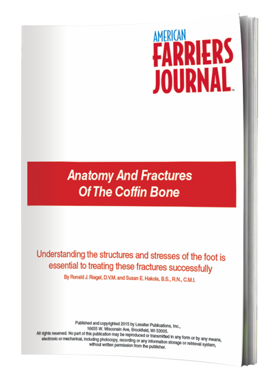 Anatomy and Fractures of the Coffin Bone