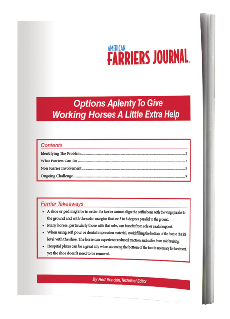 E-Book Options-Aplenty-To-Give-Working-Horses-A-Little-Extra-Help Plain Cover