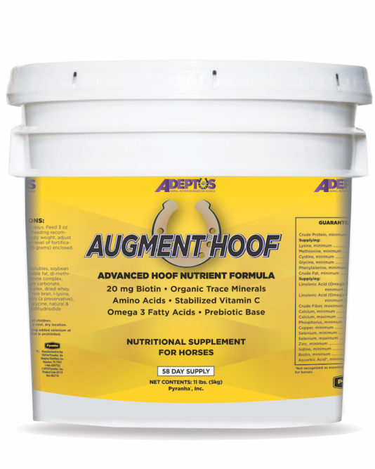 Adeptus Nutrition Augment Hoof _0820 copy