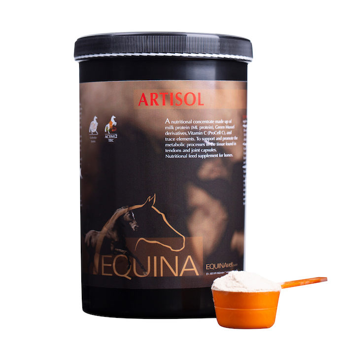 Equina USA Artisol Joint Supplement_0820 copy
