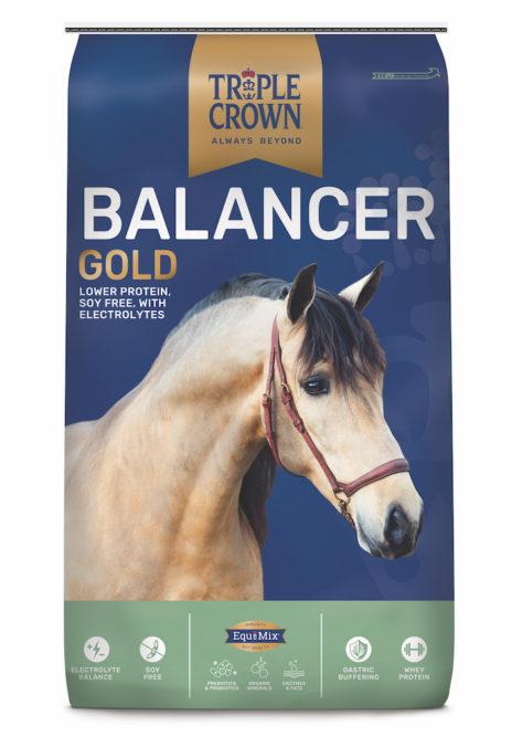 Triple Crown Nutrition Triple Crown Balancer Gold Supplement_0820 copy