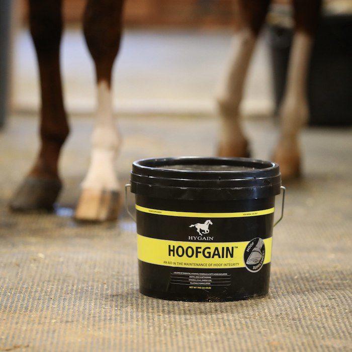 Hygain Feeds USA HOOFGAIN Hoof Supplement_0821 copy