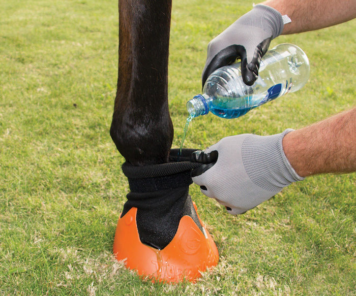 Shires Equestrian Tubbease Hoof Socks_0219 copy