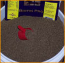 Nutra Cell Labs Biotin Pro_0320 copy