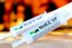 GGBC Inc./Giddyap Girls Biscuit Co. BioEZ-VF Digestive Support_0819 copy