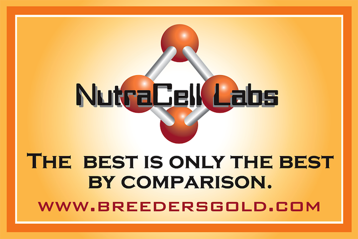 Nutra Cell Labs Nutritional Supplements