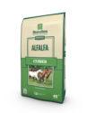 Standlee Premium Western Forage Certified Alfalfa Cube0318 copy