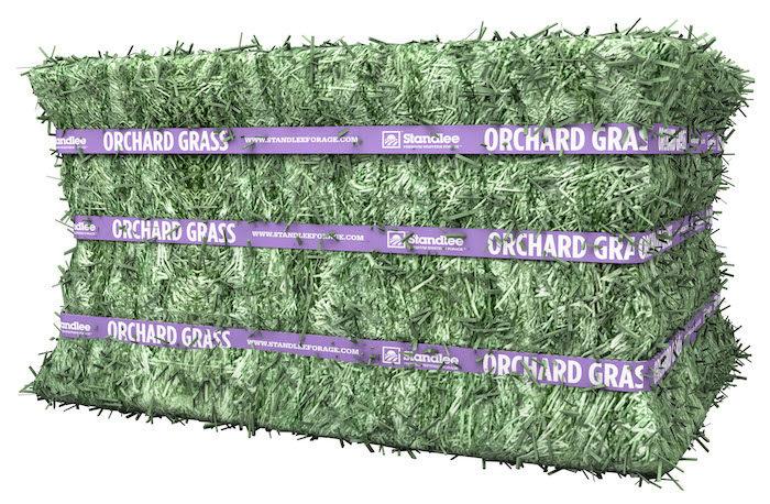 Standlee Premium Western Forage Premium Orchard Grass Compressed Bale_0318 copy