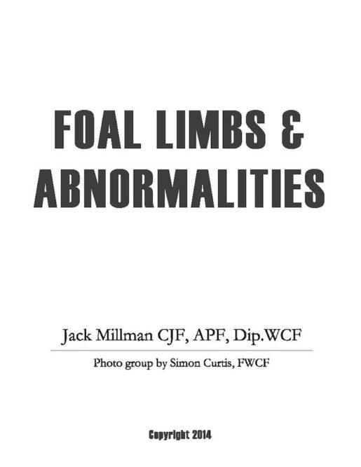 jack millman Foal Limbs..._0318 copy