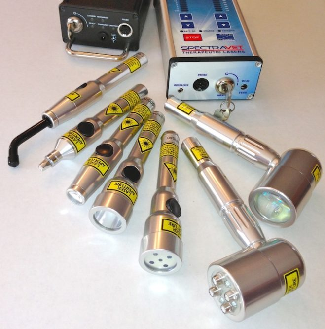SpectraVET Therapeutic Lasers Photobiomodulation/Laser Therapy Equipment_0321 copy