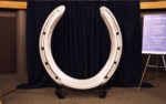 world's largest horseshoe