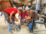 AFJ_Shoeing_School_Image_2_Career_Guide_2015-2.jpg