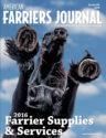 AFJ November cover 1115