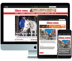 AFJ Digital Subscription